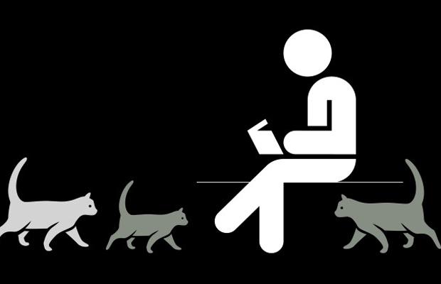 Katzenvorlesen